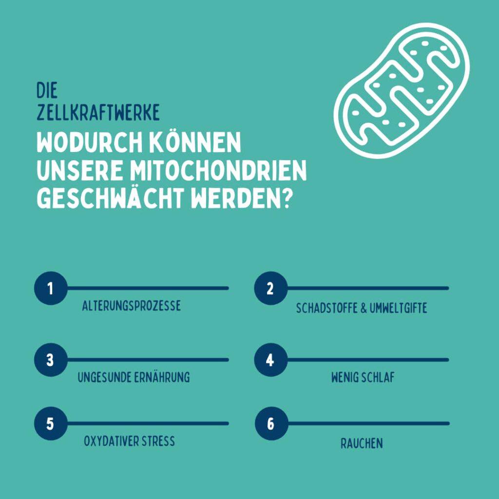 kranke mitochondrien