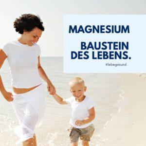 Magnesium Baustein des Lebens