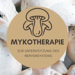 mykotherapie und nervensystem
